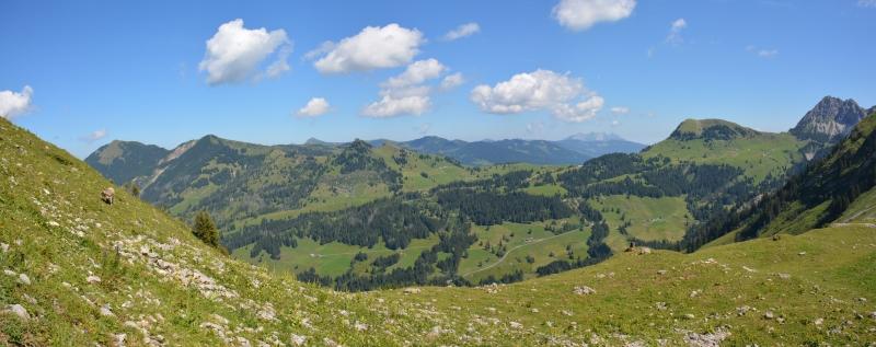Panorama Alp Stäfeli auf dem Weg zum Eisee 1655m, Aug. 2013