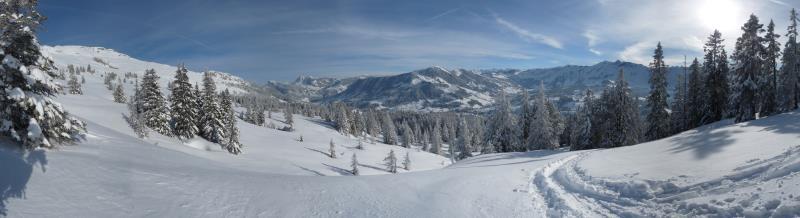 Panorama Schratten oberhalb Waldgrenze 1800m, Jan 2013